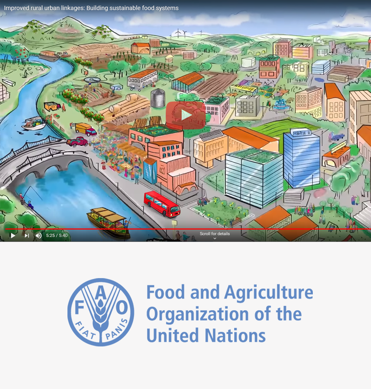 FAO Food for the Cities