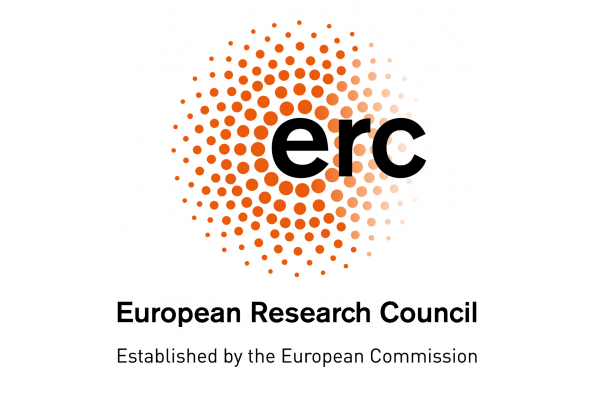 3 new ERC grants challenges